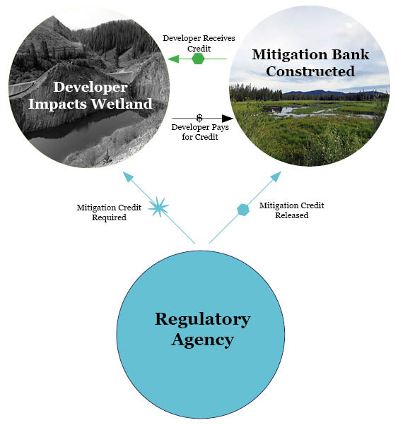 Mitigation Bank Works